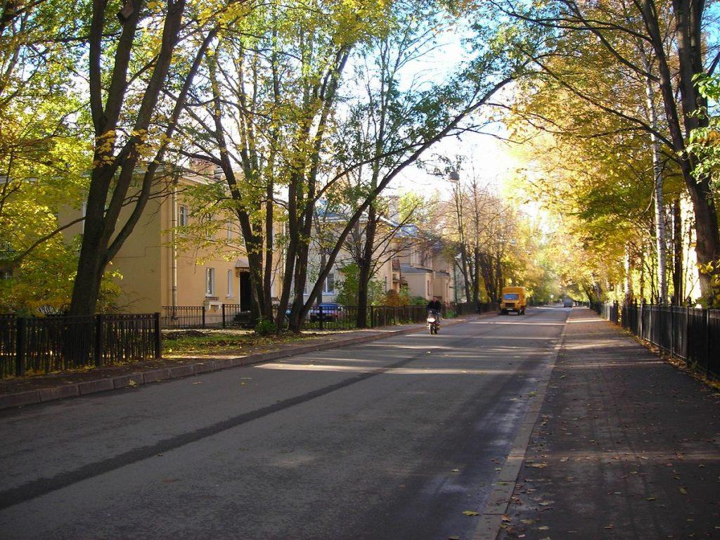 Дибуновская улица 1
