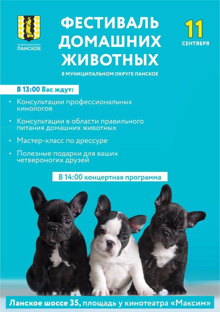 photo5292268971854247414